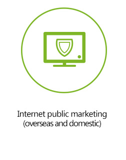 Internet public marketing (overseas and domestic)